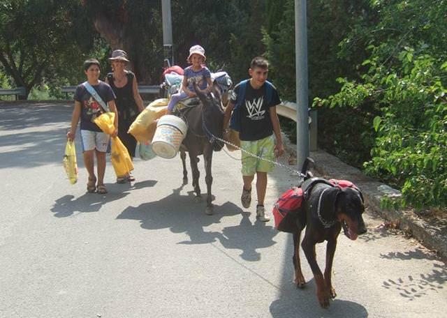 Phönix führt die Eseldame Regina, auf unserem Ausflug mit Kindern zum Strand.