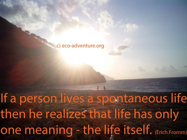 If a person lives a spontaneous life then he realizes that life has only one meaning - the life itself. (Erich Fromm)